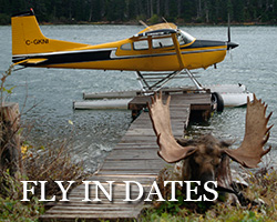 fly-in_dates